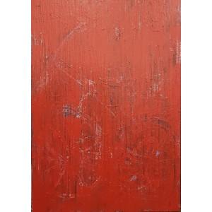 1500 EUROS : grand velo rouge